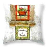 Window With Flower Pot Throw Pillow