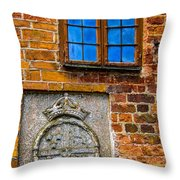 Window With Shield Throw Pillow
