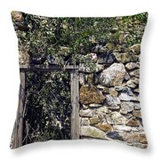 Windowless Throw Pillow