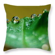 Windows In Drops Throw Pillow