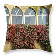Windows In Spring Throw Pillow
