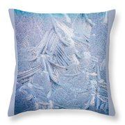 Iced Windshield  Throw Pillow