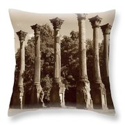 Windsor 2 Throw Pillow