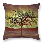 Windstorm At Skaha Lake Throw Pillow