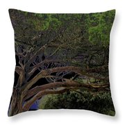 Windswept Dreams Throw Pillow