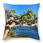 Windswept Pine On Rattlesnake Mountain Throw Pillow