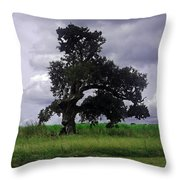 Windswept Tree Throw Pillow