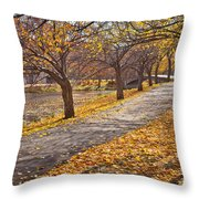 Windswept Walk Throw Pillow by Susan Cole Kelly