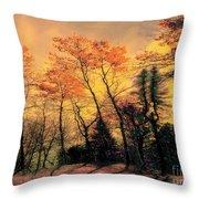 Windy  Throw Pillow by Elfriede Fulda