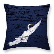 Windy Flight Throw Pillow