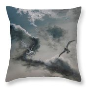 Windy Weather Throw Pillow by Diane Kraudelt