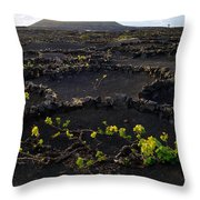 Wine 1 Throw Pillow