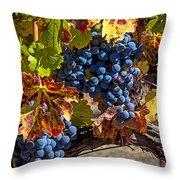 Wine Grapes Napa Valley Throw Pillow