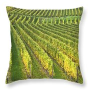 Wine Growing Throw Pillow