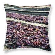 Wine-ready Throw Pillow