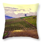 Wine Vineyard In Sicily Throw Pillow