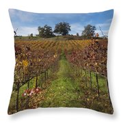Wineland Throw Pillow by Kenneth Hadlock