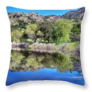Winery Pond Reflections Throw Pillow