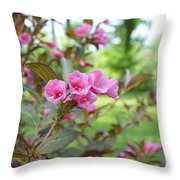 Wines And Rose Weigela Throw Pillow