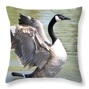 Wing Flapping Throw Pillow