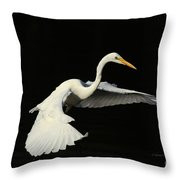 Wing Grace Throw Pillow