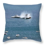 Wing Plume Throw Pillow