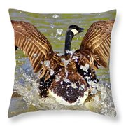 Wing Spand Throw Pillow