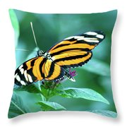 Wing Wonders Throw Pillow