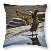 Winged Bird Throw Pillow
