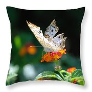 Winged Butter Throw Pillow