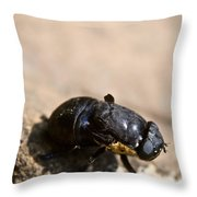 Wingless Fly Throw Pillow
