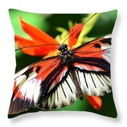 Wings 9 Throw Pillow