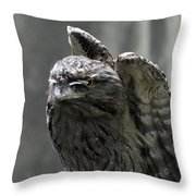 Wings Above A Tawny Frogmouth That Looks Interesting Throw Pillow