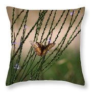 Wings Aglow  Throw Pillow