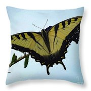 Wings Are Perfect Match - Eastern Tiger Swallowtail Throw Pillow
