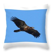 Wings Of Eagles Throw Pillow