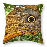 Wings Of Fancy I Throw Pillow