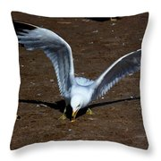 Wings Of Fury Throw Pillow