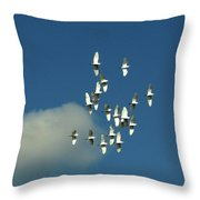 Wings Of White Throw Pillow