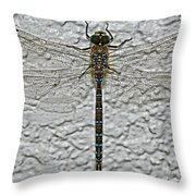 Wings On Stucco Throw Pillow