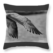 Wings Over Water Beach Pictures Black And White Seagull Throw Pillow