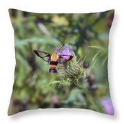 Wings You Can See Through Throw Pillow