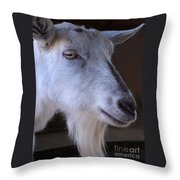 Winsome Goat Throw Pillow