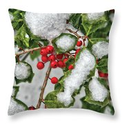 Winter - Ice Coated Holly Throw Pillow