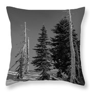 Winter Alpine Trees, Mount Rainier National Park, Washington, 2016 Throw Pillow