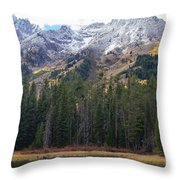 Winter And Fall Mix Throw Pillow