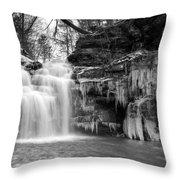 Winter At Big Falls  Throw Pillow