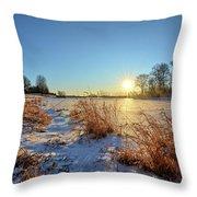 Winter At Mayne's Throw Pillow