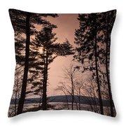 Winter At Nepaug Throw Pillow