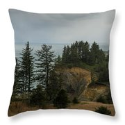 Winter At Oswald West Throw Pillow